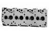 Cylinder Head:OSL01-10100E